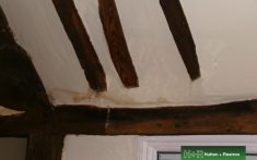 Leak stain under timber beams