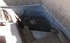 Roof drainage system investigation