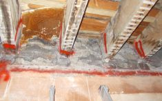 Dry Rot Infection to the floor structures of a former Hospital in Bristol - (3)