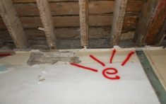 Dry Rot Infection to the floor structures of a former Hospital in Bristol - (4)