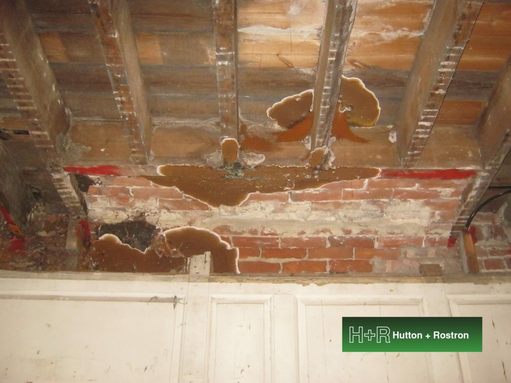 image of dry rot on an exposed ceiling