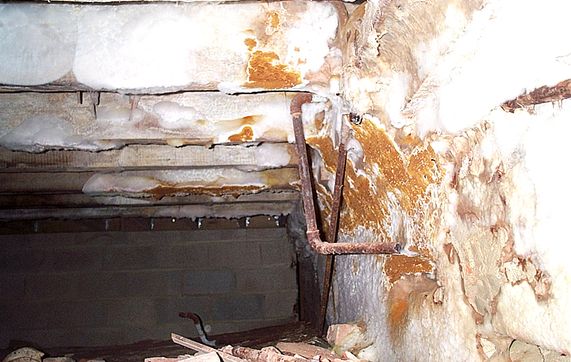Reactivated dry rot