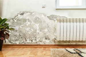 damp penetration - image of damp penetrating the inside of a living room